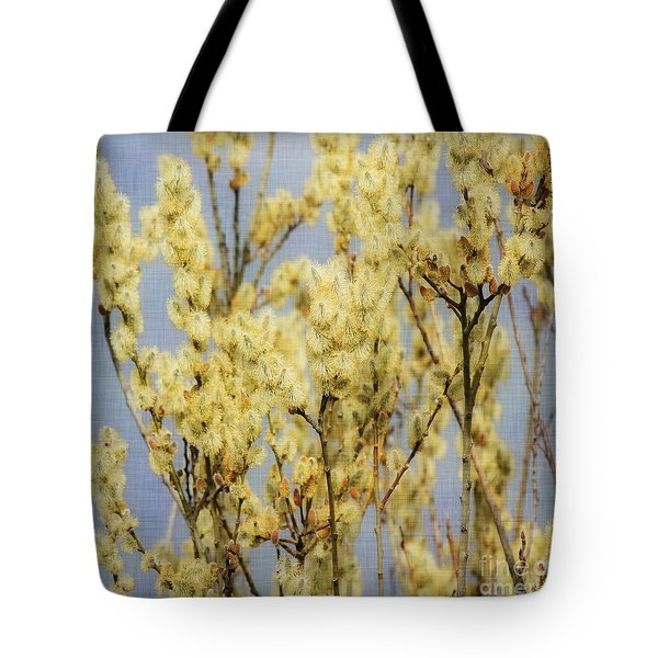 Pussy Willow Delight Tote Bag