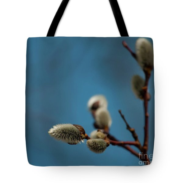 Pussy Willow... Tote Bag by Nina Stavlund