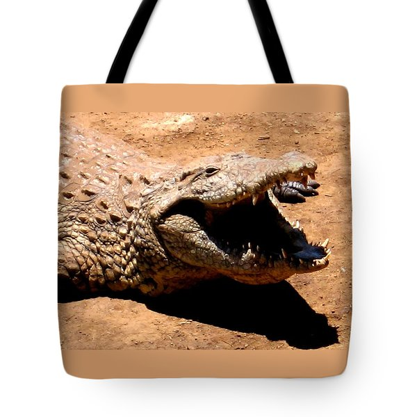Put It Right Here Tote Bag by Jay Milo