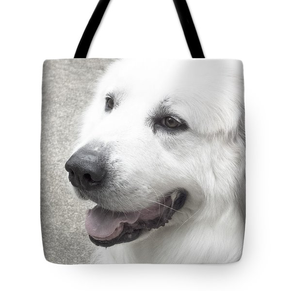 Pyrenees In The Park Tote Bag