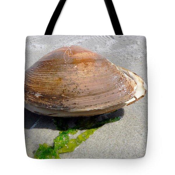 Quahog Tote Bag