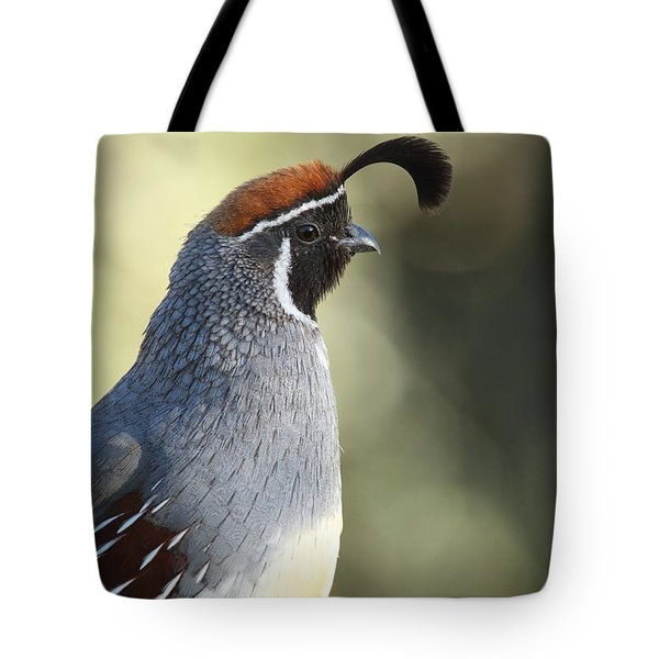 Quail Portrait Tote Bag