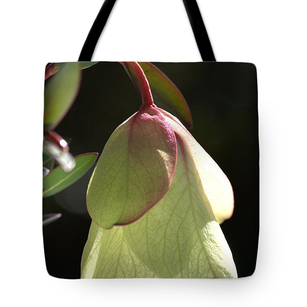 Qualup Bell Flower  Tote Bag