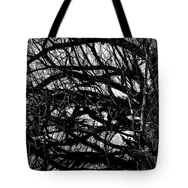 Quantum Entanglement 1 Tote Bag