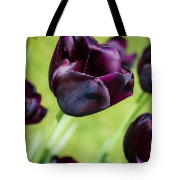 Tote Bag featuring the photograph Queen Of The Night Black Tulips by Peta Thames