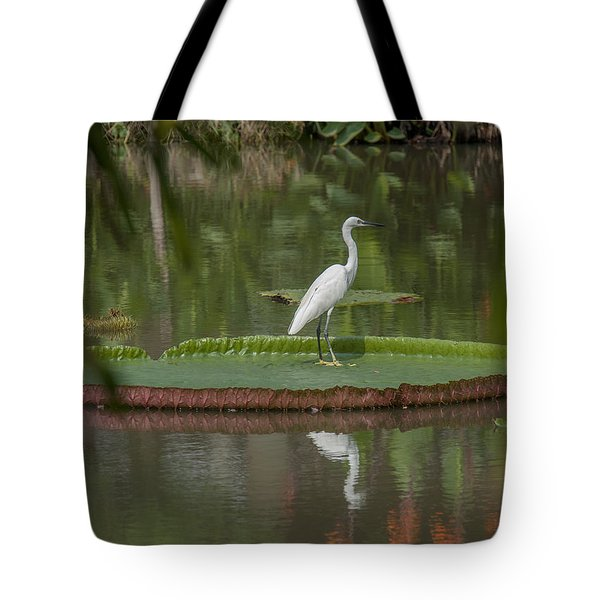 Queen Victoria Water Lily Pad With Little Egret Dthb1618 Tote Bag