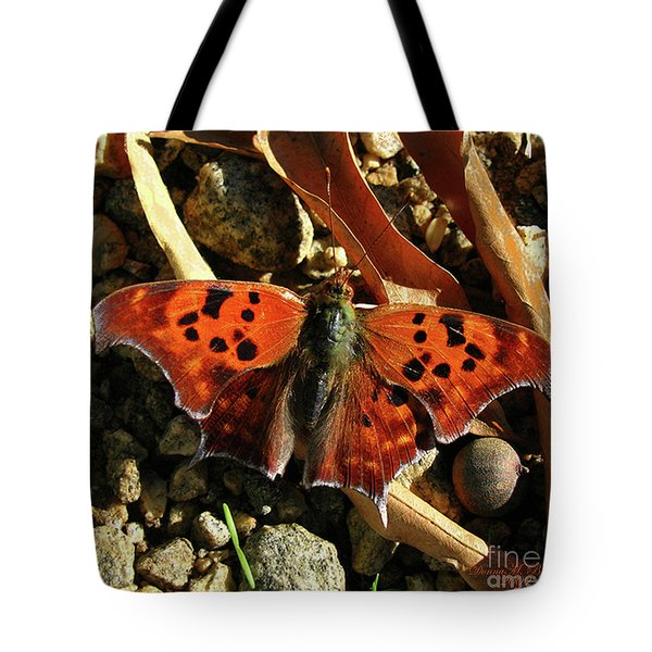 Tote Bag featuring the photograph Question Mark Butterfly by Donna Brown