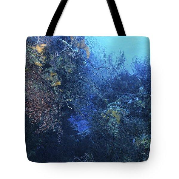 Quiet Beauty Tote Bag