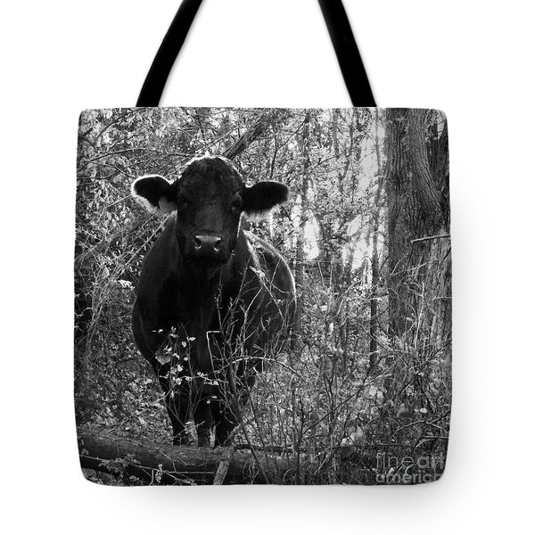Quiet Companion Tote Bag by J L Zarek