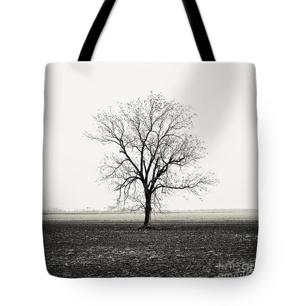 Quiet Desperation Tote Bag by Scott Pellegrin