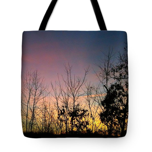 Quiet Evening Tote Bag by Linda Bailey