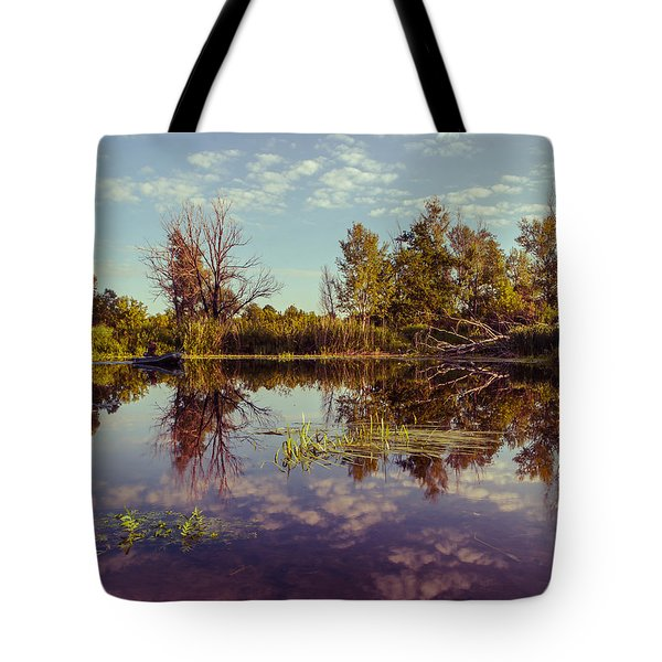Tote Bag featuring the photograph Quiet Morning by Dmytro Korol