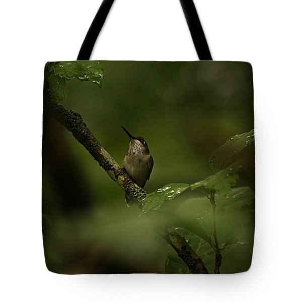 Quietly Waiting Tote Bag