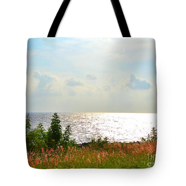 Quietude Tote Bag by Darla Wood