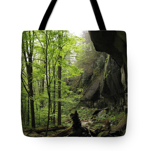 Quilliams Cave Tote Bag by Melinda Fawver