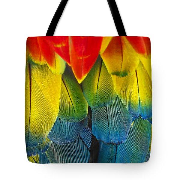 Quillicious... Tote Bag
