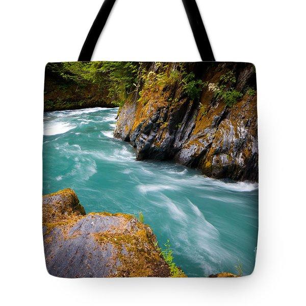 Quinault River Bend Tote Bag