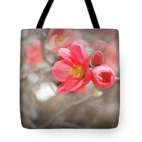 Tote Bag featuring the photograph Quince Blossoms by Katie Wing Vigil