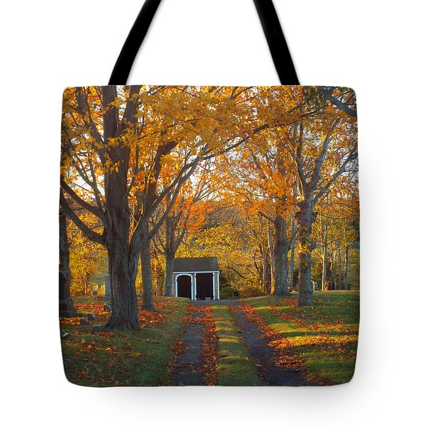 Quivet Morning Tote Bag by Dianne Cowen