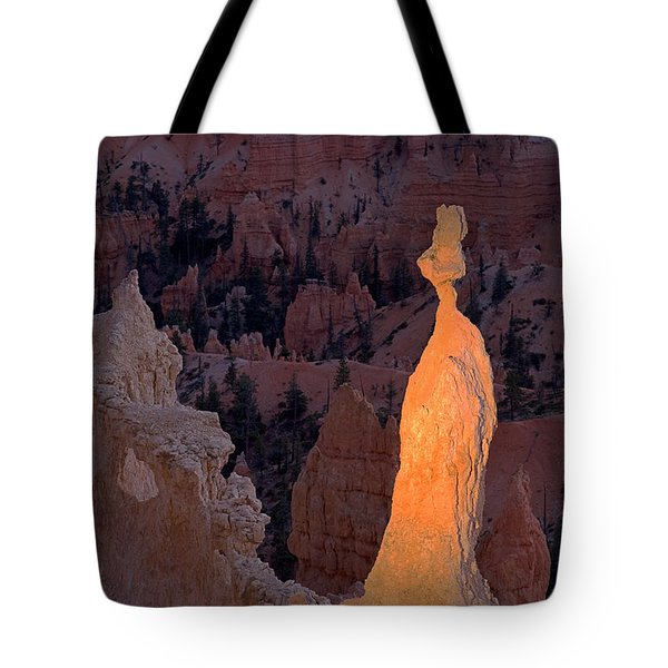 Rabbit Sunset Point Bryce Canyon National Park Tote Bag