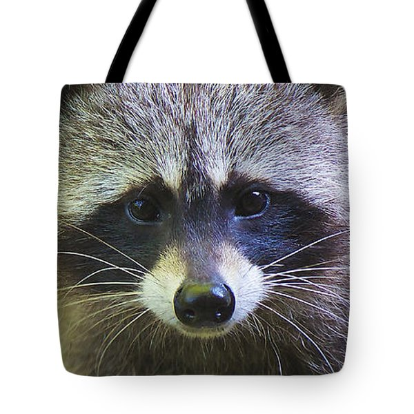 Tote Bag featuring the photograph Raccoon - Raton Laveur - Procyon Lotor by Nature and Wildlife Photography