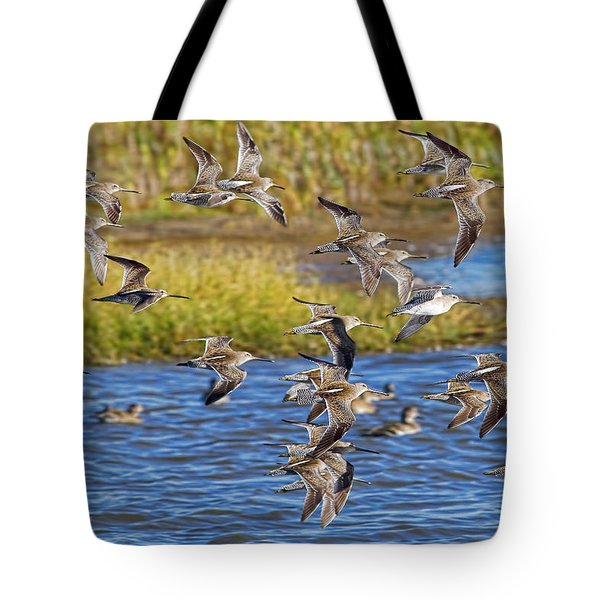 Tote Bag featuring the photograph Racing Stripes by Gary Holmes