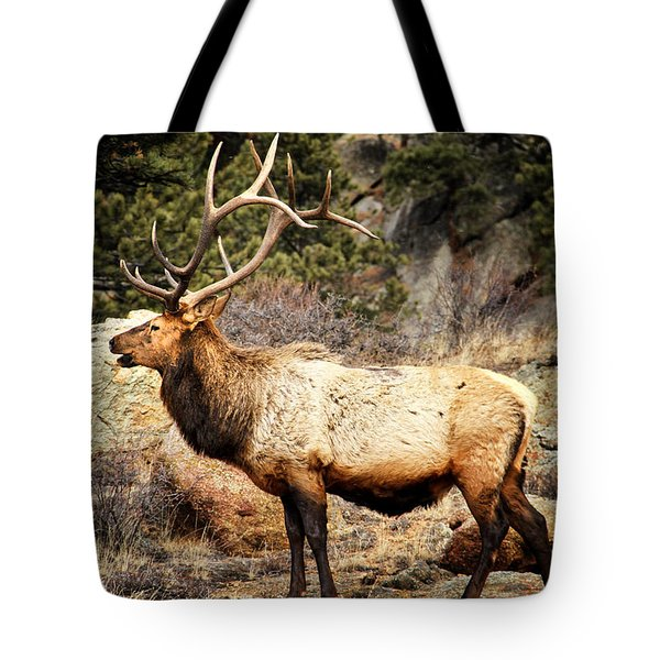 Rack Of Elk Tote Bag