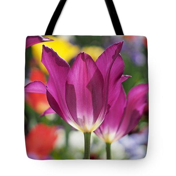 Radiant Purple Tulips Tote Bag by Rona Black
