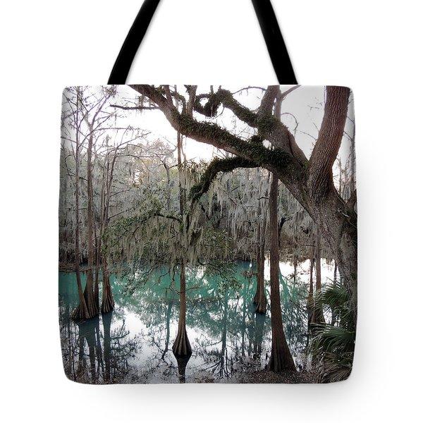 Radium Springs Creek Tote Bag by Kim Pate