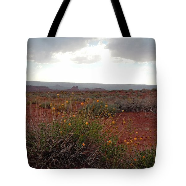 Rain At Monument Valley Tote Bag by Heather Coen