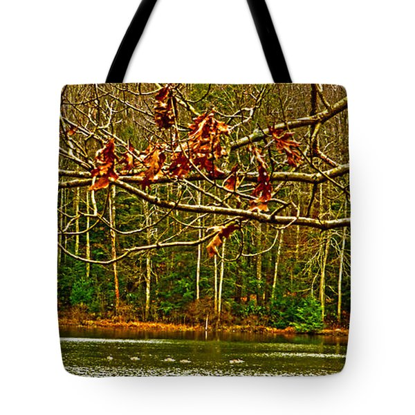 Rain At The Pumpie Tote Bag