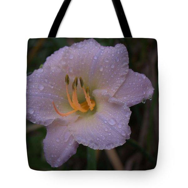 Rain Daylilly 2 Tote Bag