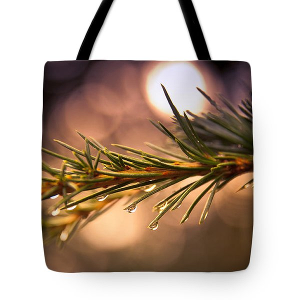 Rain Droplets On Pine Needles Tote Bag by Loriental Photography