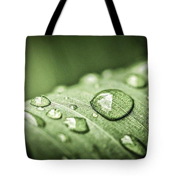 Rain Drops On Green Leaf Tote Bag by Elena Elisseeva