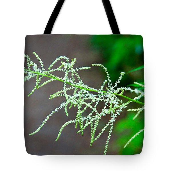 Rain Forest Magic Tote Bag by Dana Kern