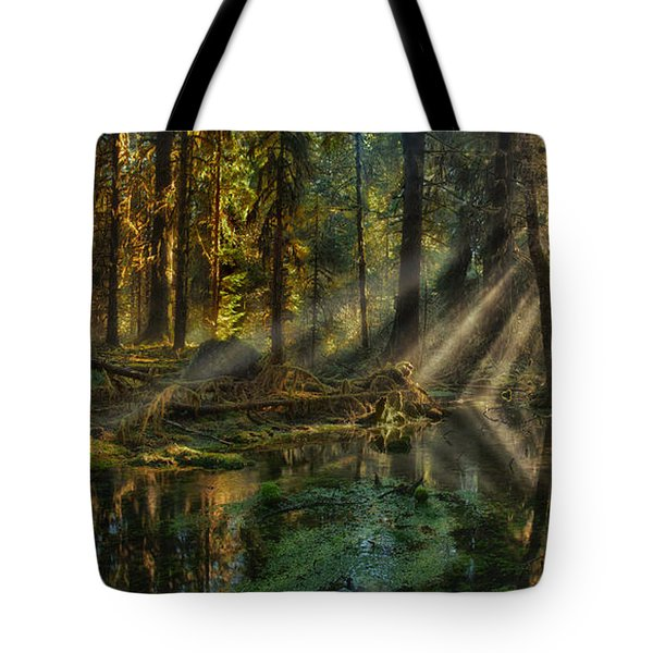 Rain Forest Sunbeams Tote Bag