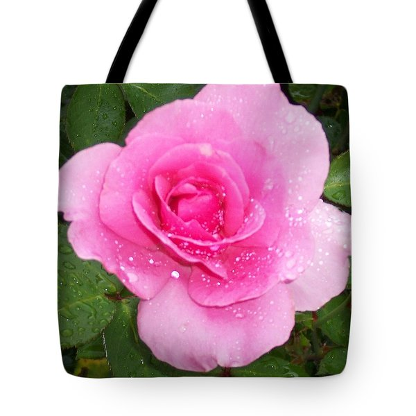 Rain Kissed Rose Tote Bag by Catherine Gagne