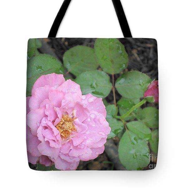 Rain Kissed Rose Tote Bag