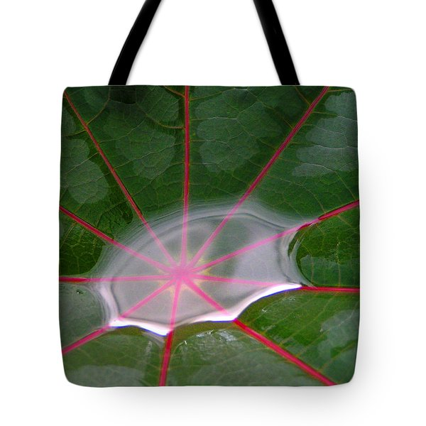 Tote Bag featuring the photograph Rain Puddle by Gigi Dequanne