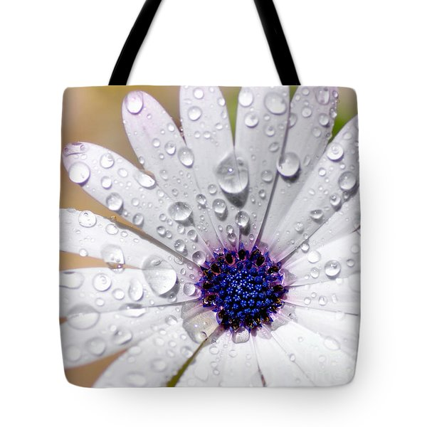 Rain Soaked Daisy Tote Bag