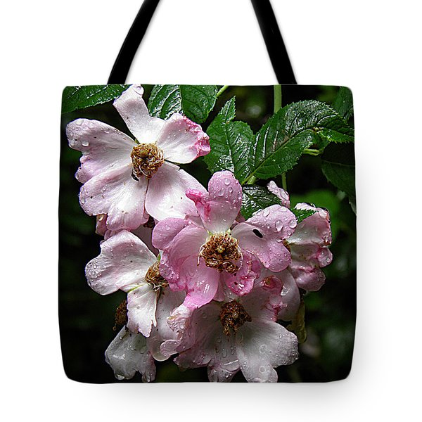Rain Soaked Rose Tote Bag by Nick Kirby