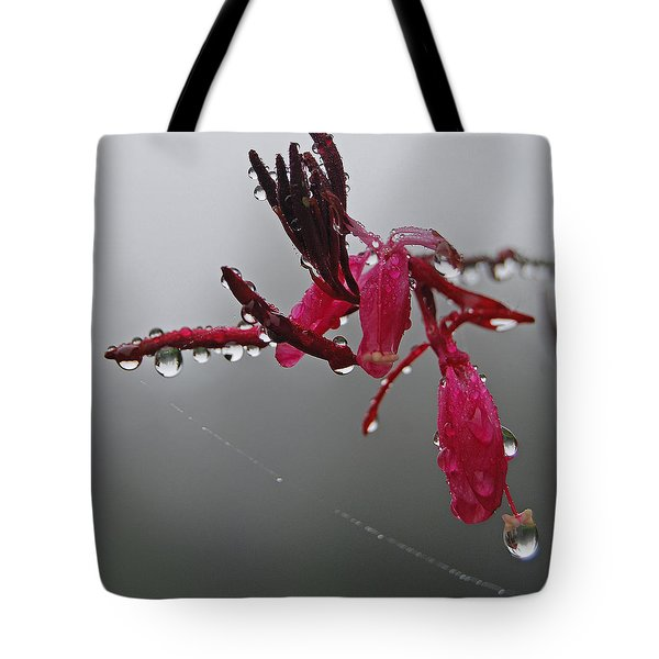 Tote Bag featuring the photograph Rain Weaver by Jani Freimann