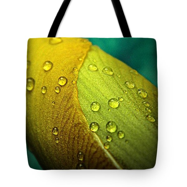 Rain Wrapped Tote Bag