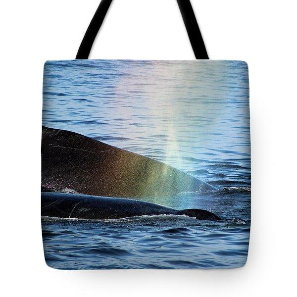 Rainblow Tote Bag