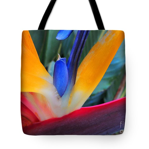Rainbow Bright Tote Bag