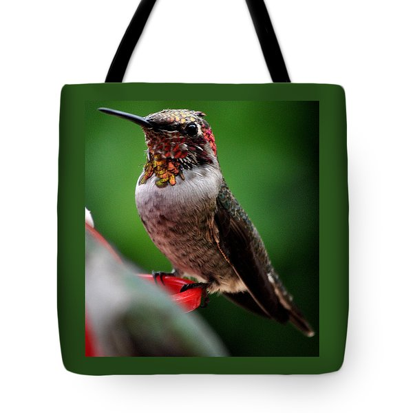 Tote Bag featuring the photograph Rainbow Colored Male Anna by Jay Milo