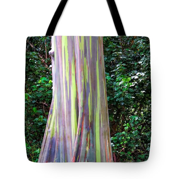 Rainbow Eucalyptus 3 Tote Bag by Dawn Eshelman
