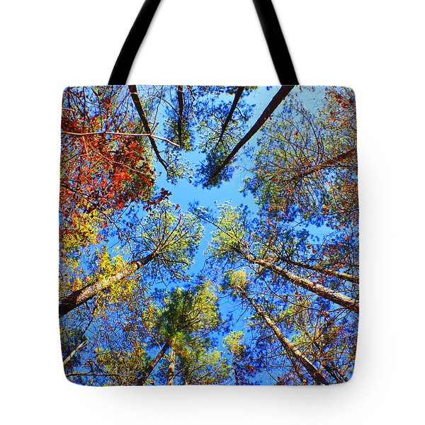 Rainbow Fall Tote Bag