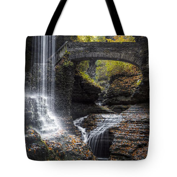 Rainbow Falls Tote Bag by Eduard Moldoveanu