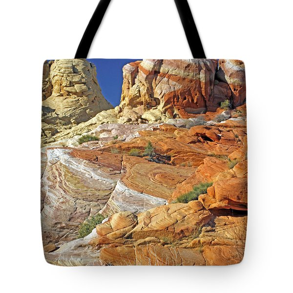 Rainbow Land Tote Bag